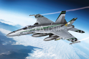 USN F/A-18E VFA-195 Chippy Ho USA Air Force