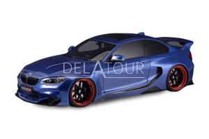 BMW M235 Darwinpro MTC Black Sails Widebody 2015 B